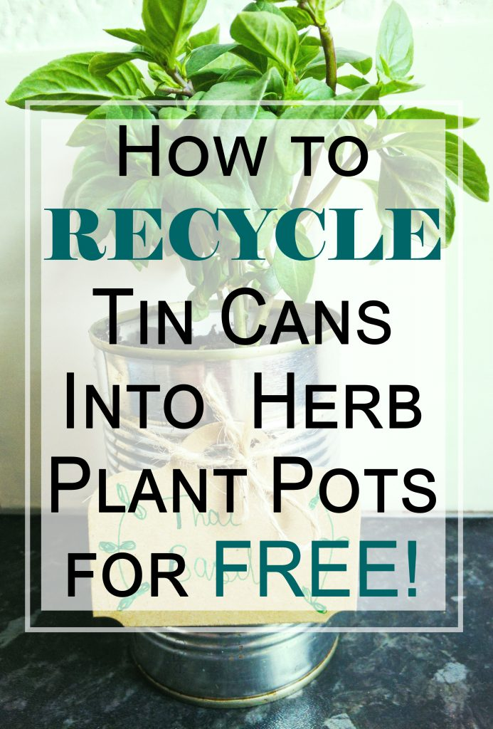 how to recycle tin cans into herb plant pots hobbyism