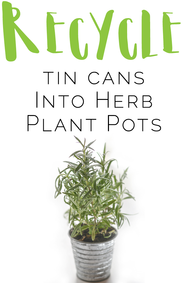 recycled herb plant pots